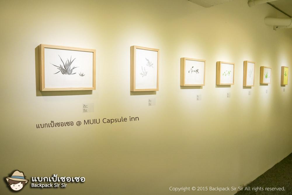 แบกเป้เซอเซอ ตอน เตียงสองชั้นกับจินตนาการ รีวิวโรงแรม MUIU Capsule inn